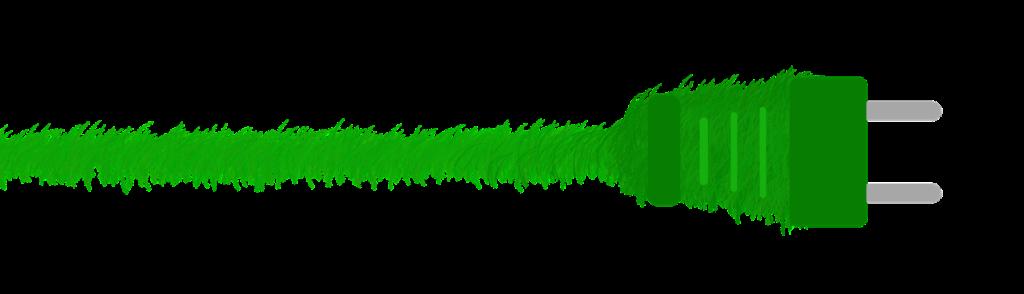 Grüner Netzstecker